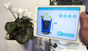 Information sent from a Parrot Pot is shown on a tablet during the 2015 International Consumer Electronics Show (CES) in Las Vegas